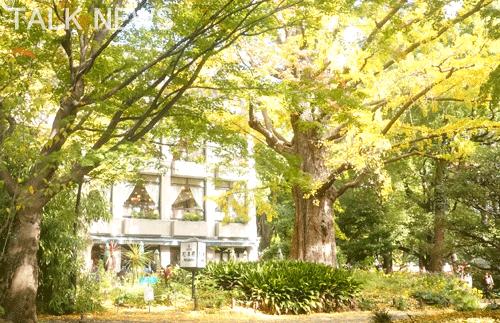 都内紅葉/日比谷公園・松本楼