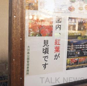 紅葉見頃・大田黒公園
