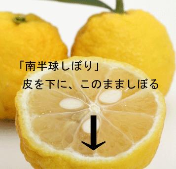 柚子のしぼり方・香りが出る柚子の南半球しぼりとは?